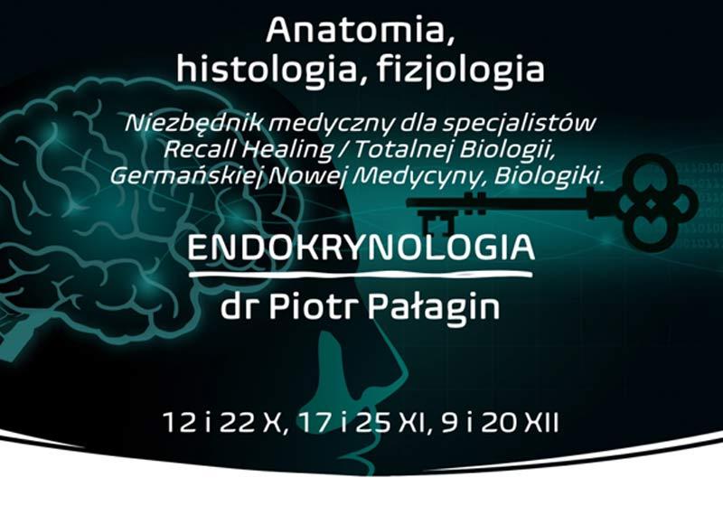 Endokrynologia – Anatomia, histologia, fizjologia, dr Piotr Pałagin
